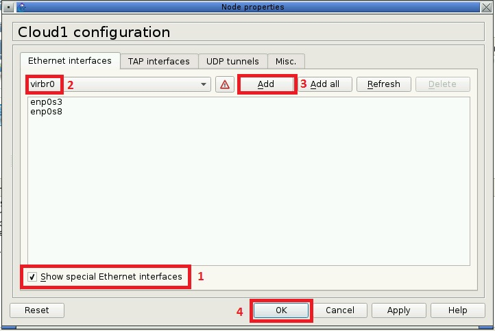 Configuring a cloud in GNS3 in a Live Raizo VM to allow routing to the host machine