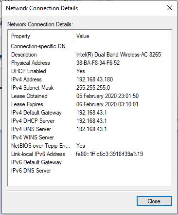 """Viewing """"Network Connection Details"""" in Windows"""