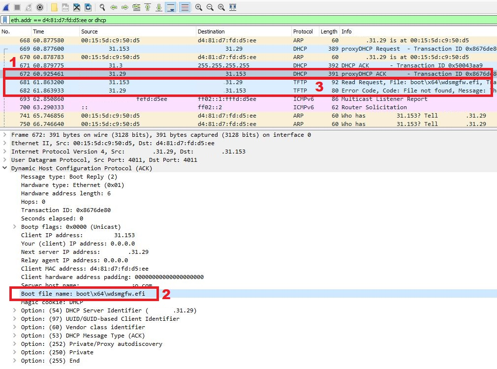 Wireshark capture output showing filter, packet list and detail windows